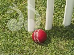 Gala Cricket Day