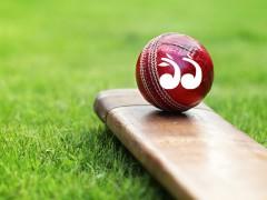 Upper Hunter Cricket: Round 13 Results