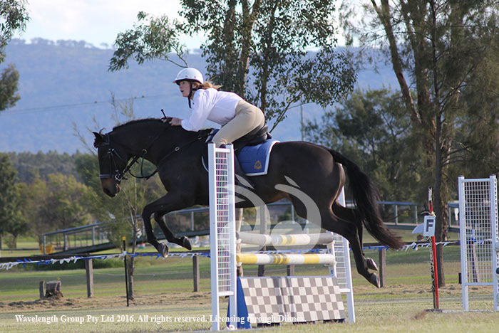 DarcyPittman from Scone High School midflight in the showjumping section.