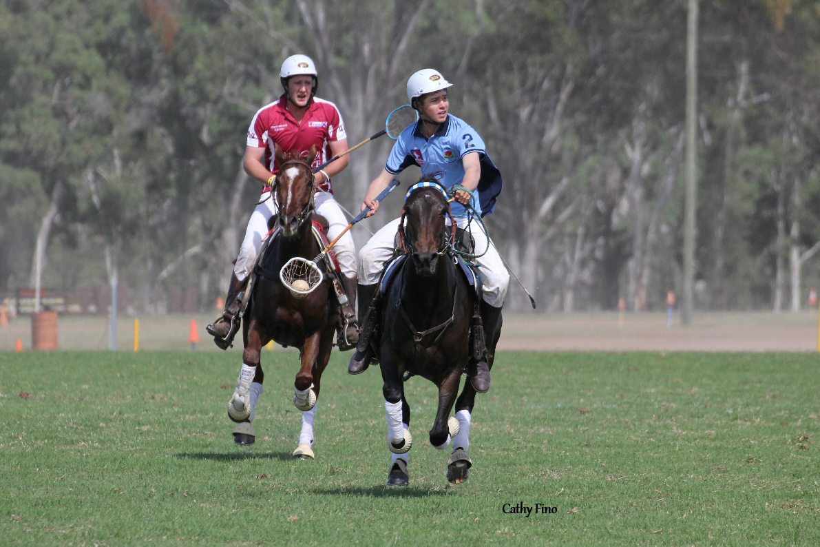 Joe Wamsley and Champion Australian Stock Horse Lulus Gift competing for New South Wales at Barastoc. Photo by Cathy Finlayson.