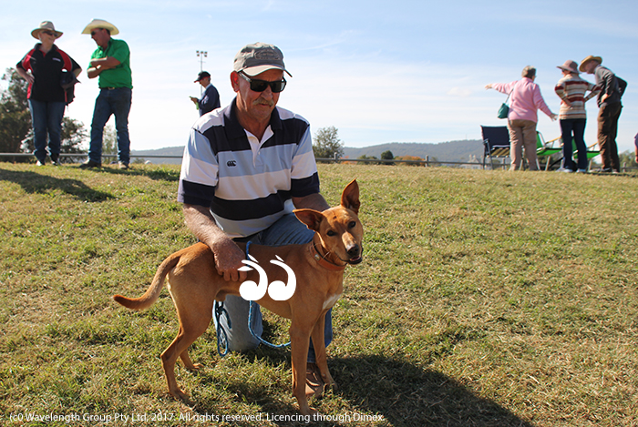 Snow Purcell with his dog Tatter who took out this year's dog high jump at the Jack Johnston Memorial Day.