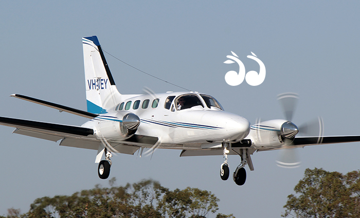 CASA will be flying low conducting safety assessments over Scone next week. Photo: Corporate Air.