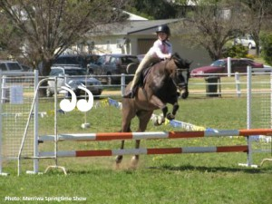 Merriwa Springtime Show @ Merriwa Showground | Merriwa | New South Wales | Australia